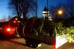 Weihnachtsbaum Kichvorplatz 2018-11-23 (1)