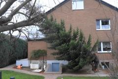 Weihnachnachtsbaum Kirche St. Vinzenzius 2018-12-15 (02)